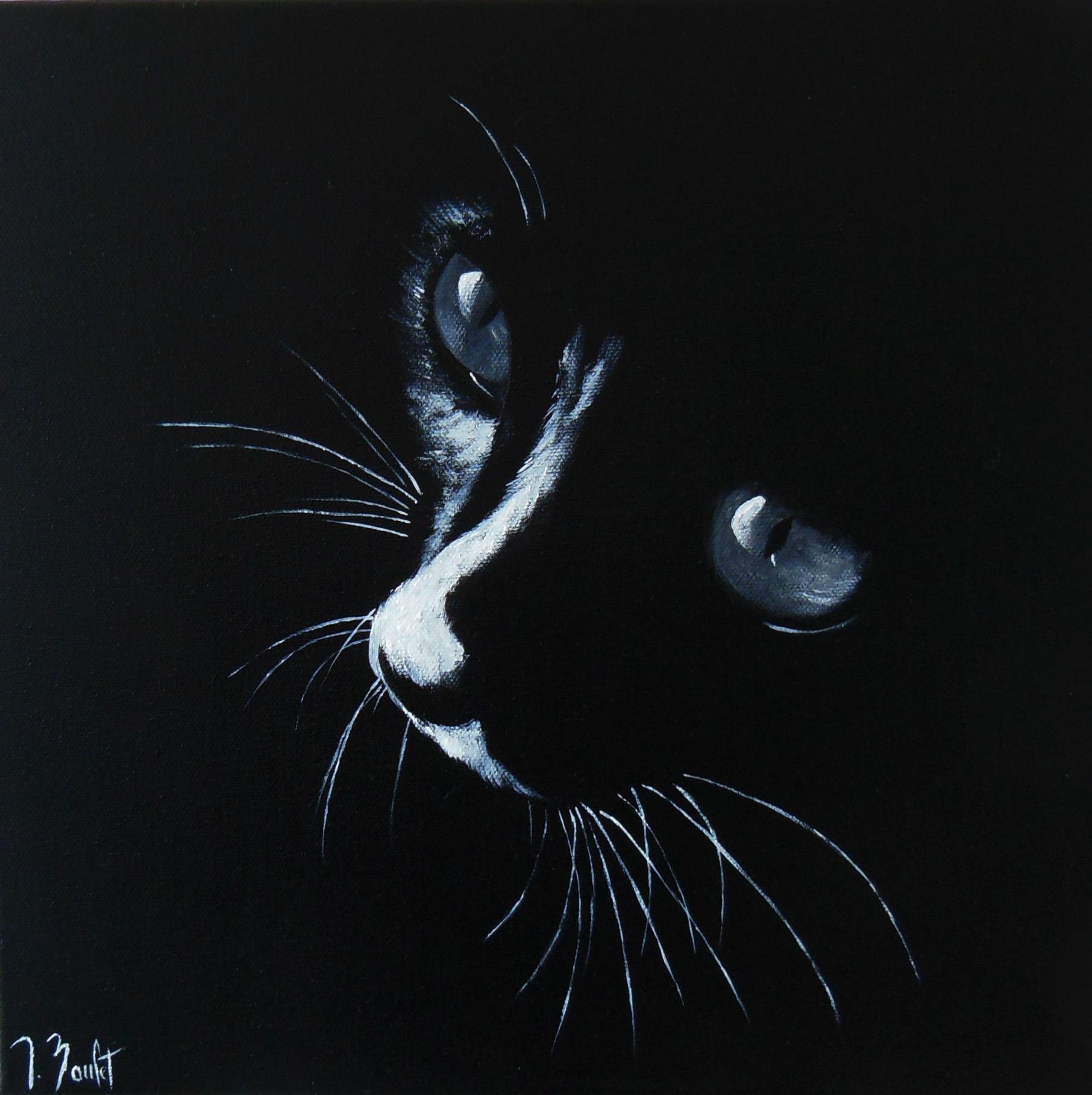 Les yeux du chat (vendu)